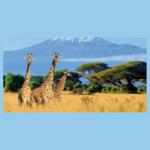Abenteuerreise nach Tansania & Sansibar gewinnen
