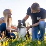 Tractive GPS Tracker für Hunde & Katzen gewinnen